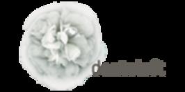 Dentaloft im Nordend Logo